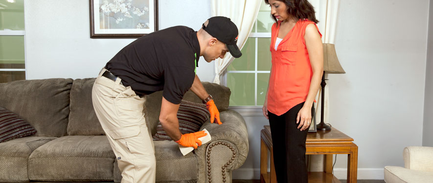 Cedar Mill, OR carpet upholstery cleaning