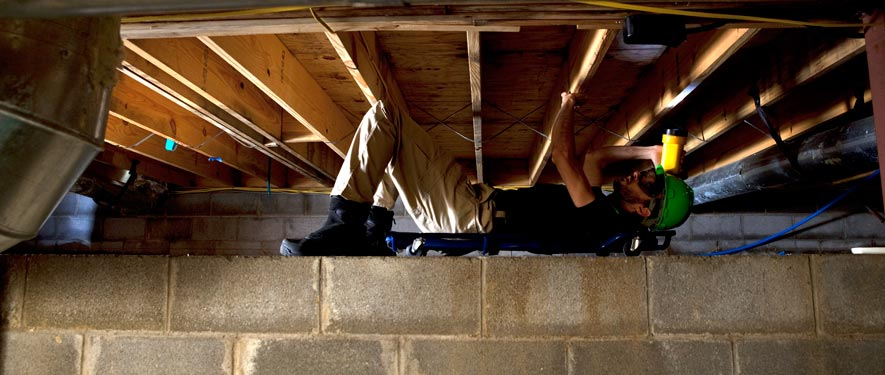 Cedar Mill, OR mold removal
